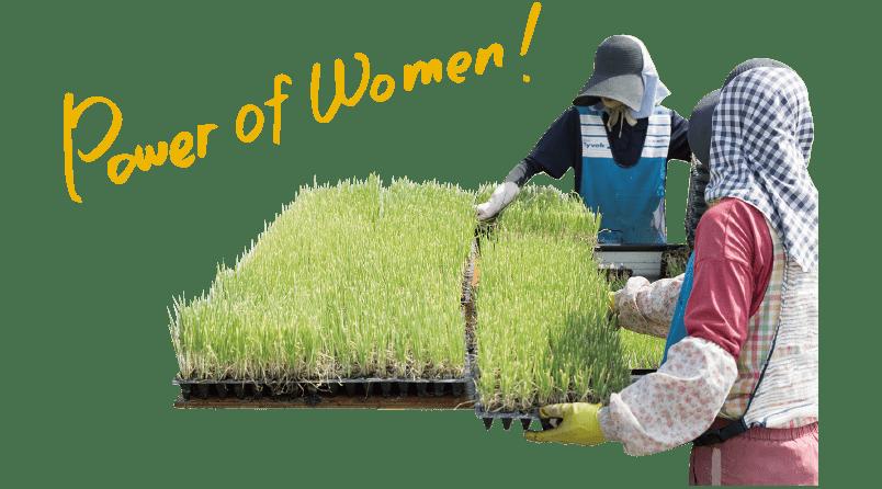女性が活躍
